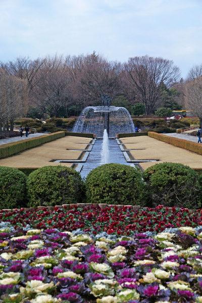 昭和記念公園201002-18