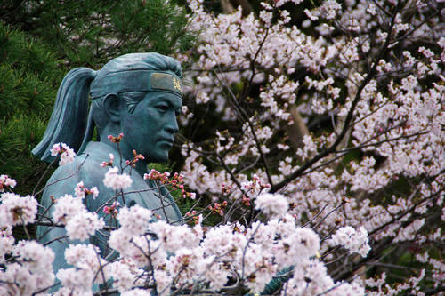 高幡不動尊春201004-10