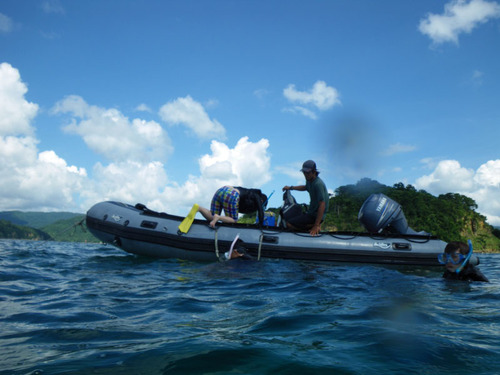 西表島船浮イダの浜201108-16