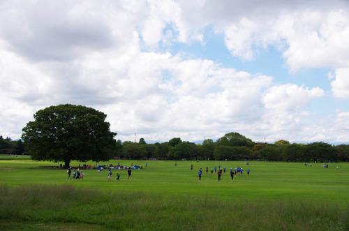 昭和記念公園201209-13