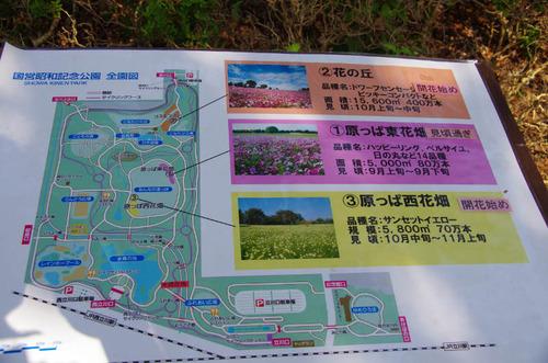 昭和記念公園201110-1
