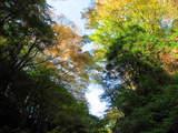 陣馬の滝-6