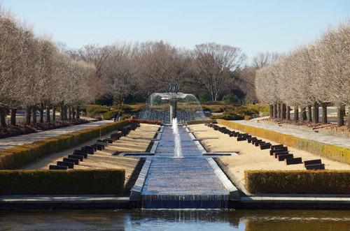 昭和記念公園201312-13