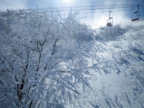 正月スキー2011-5