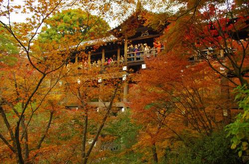 京都東福寺201211-9