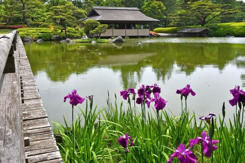 昭和記念公園201605-13