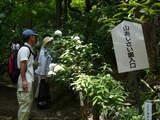 高幡不動0607-2