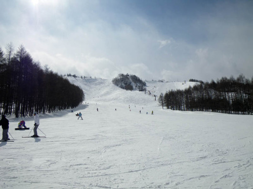 白樺スキー201303-3