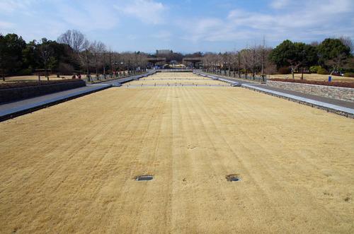 昭和記念公園201102-1