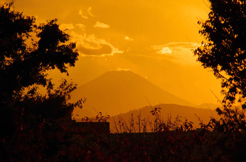 昭和記念公園夕景201211-1