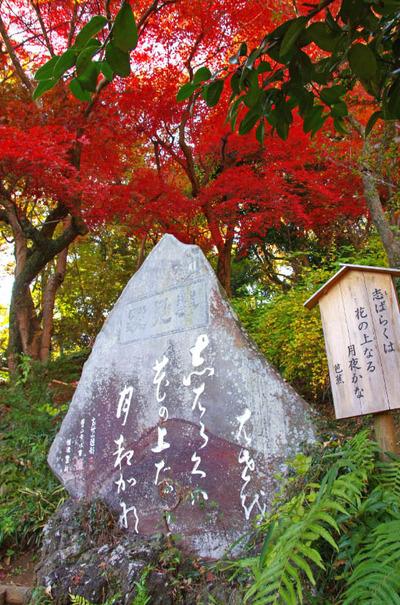 京王百草園201311-8芭蕉句碑