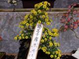 菊まつり受賞-1