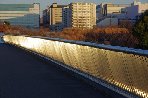 昭和記念公園201312-10