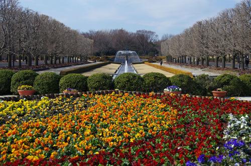 昭和記念公園201102-2